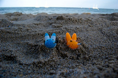 relax al mare anche per i rabbits (suicide tuesday) Tags: toys seaside suicidetuesday smokingrabbits