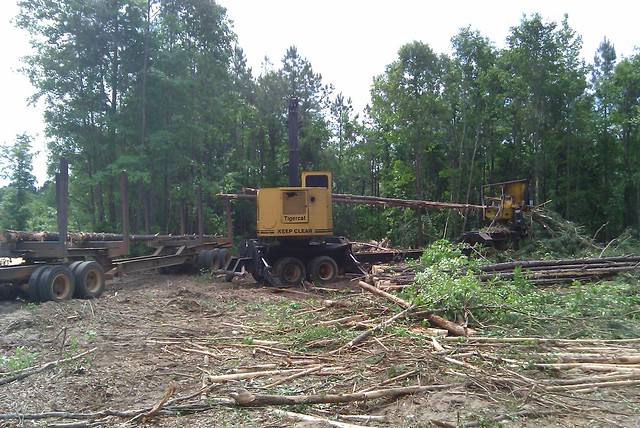Tigercat 230B Knuckleboom Loader with CSI Delimber 03 by Jesse Sewell