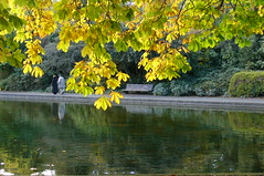 Autumn @ Herbert Park (eyair) Tags: park autumn ireland dublin reflection pond herbert ashmashashmash