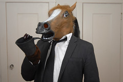 Mr Horse (gildat20) Tags: horse mask creepy