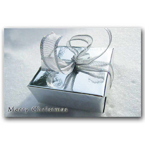 Silver Present Holiday Card