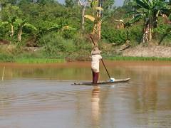 A woman on the canoe. (Bintang Agung) Tags: indonesia padi bintang lunta sawah agung banjarmasin jukung bibitpadi pudaksetegal musimtanam banih bintangagung itikalabio