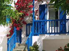 How pretty is This (saxonfenken) Tags: blue greece superhero thumbsup storybook mykonos 703 gamewinner mywinners abigfave superaplus aplusphoto ultimateshot favoritegarden superhearts fiveflickrfavs bachspicsgallery top20greece friendlychallenges fotocompetitionbronze herowinner storybookwinner pregamewinner 703city