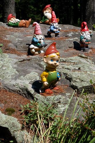 Catskill Gnomes