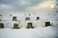 Bitter Cold (peterkelly) Tags: winter sky cloud snow canada film cemetery grave graveyard dead island death novascotia cross wind headstone snowdrift tombstone canadian gale northamerica capebreton maritimes islemadame westarichat