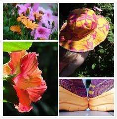 Favorites Color + Color  Week 6 Orange & Pink