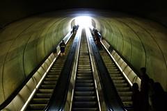 Dupont Circle Station (Oh Richard) Tags: green wow washingtondc crazy metro tunnel escalators wtf omg dupontcircle