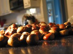 chestnut bounty