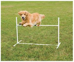 PDT00-11031 Bar Jump[1], wireless pet fences, undeground dog fences, pet doors, batteries & accessories, dod agility training equipment, dogs agility equipment, closed tunnel, agility closed tunnel, b