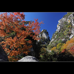 Shosenkyo gorge (Laurent T (aka thery_lg)) Tags: blue autumn red sun color tree leaves rock japan landscape momiji gorge moutain kofu chubu shosenkyo