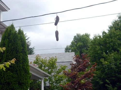 SE Flip Flops