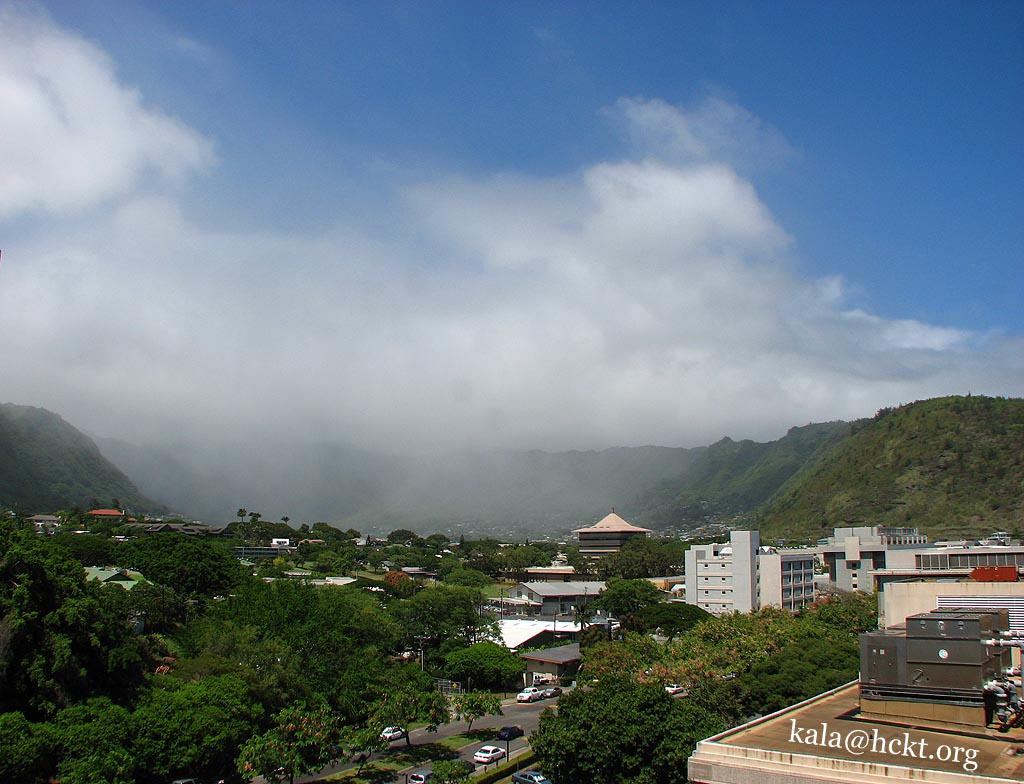 Manoa Valley Rain