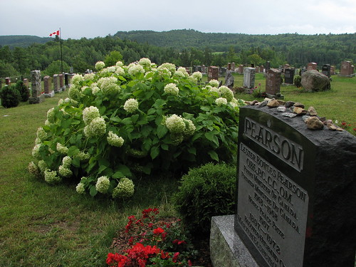 View from Lester's grave site