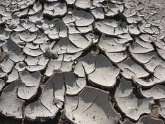 bone-dry mud