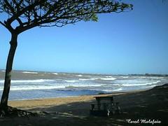 Praia Jacaraipe - ES (Carolina Barros) Tags: praia mar areia banco céu nuvens es coqueiros jacaraipe gshotp517 sombraaguafresca