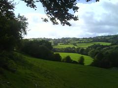 fields 3a