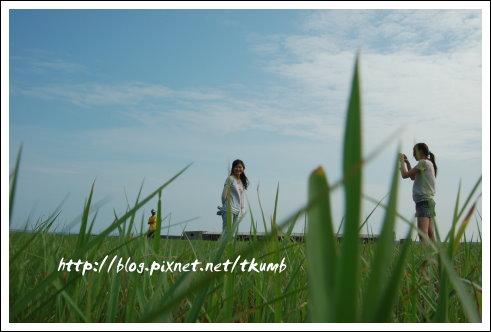 二崁草原 (10)