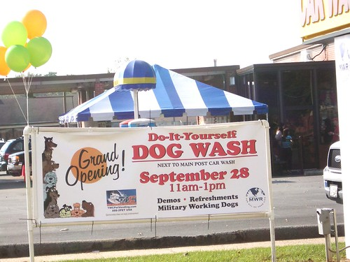 Flickriver tmcpetvendings most interesting photos fort benning dog wash grand opening solutioingenieria Choice Image