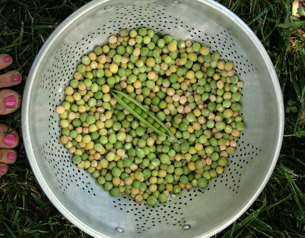 peas, shelled