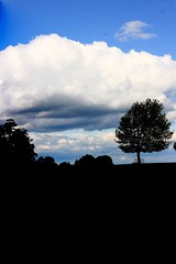 Yorkshire Sky (rosewoodoil) Tags: summer england silhouette clouds yorkshire summersky thecloudappreciationsociety anouilh photographedublin thecloudappreciation