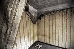 Abandoned house - Prypiat city & Chernobyl #10 (Grey Photography) Tags: city wallpaper house abandoned power accident oct radiation nuclear ukraine ukrainian kiev province zone 2010 chernobyl alienation tchernobyl oblast pripyat chernobly chornobyl prypiat plant pripjat city  union prypait kiev province chernobyl disasternuclear  atomograd atom soviet