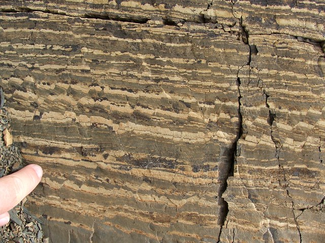 microfaulted sedimentary rock