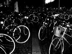 Bikealicious Nightness