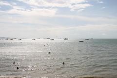 IMG_6717 (Ian Fuller) Tags: thailand pattaya chonburi