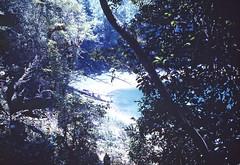TZISCAO,CHIAPAS (TZISCAO) Tags: lake nature mexico rainforest chiapas montebello tziscao mundomaya rohaca ecotziscao robertohallcapek