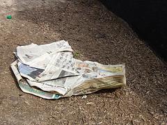 Jornal Velho... Recicle JÁ!!!