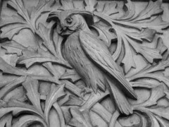 The Owl and the Acanthus (richardr) Tags: city uk greatbritain urban sculpture building bird london heritage history museum architecture geotagged europe european unitedkingdom britain terracotta decoration victorian historic victoriana owl kensington acanthus naturalhistorymuseum europeanunion westlondon waterhouse victorianarchitecture richardowen historicalplaces kensingtonandchelsea alfredwaterhouse albertopolis geo:lat=51495673 geo:lon=0175856