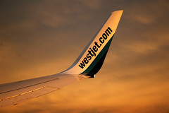 Sunkist Winglet (caribb) Tags: travel airplane flying aircraft wing jet super best explore boeing winglet westjet transportaiton flugzeuge 737700 flickrexplore luchtvaart budgetairlines 73776n bestaircraft