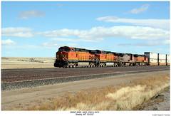 BNSF 4662, 4905, 556 & 4370 (Robert W. Thomson) Tags: railroad train montana diesel railway trains shelby locomotive trainengine ge bnsf dash8 doublestack dash944cw burlingtonnorthernsantafe dash9 cofc c449w b408w fouraxle sixaxle