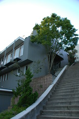 Morning climb (Robert Ogilvie) Tags: stairs foundinsf gwsf stairsofsanfrancisco