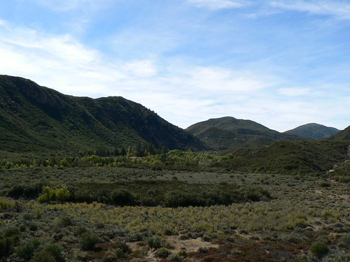 View West Toward Howard Creek