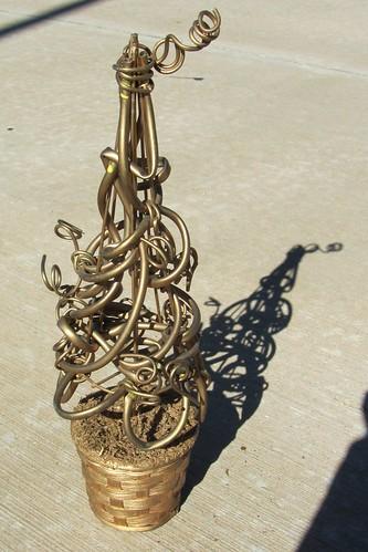 2010November4_Tree 003