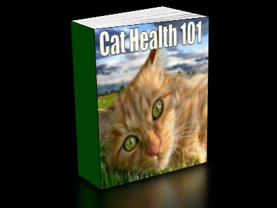 CAT-HEALTH-101-BOOKCOVER