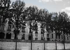 Quai de la Seine (oxpride85) Tags: paris monuments bateauxmouches laseine