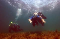 Олег Прохоров: «Море — среда, которая убрала твою немощь передвижения»