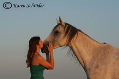 Friendship (karen_kluge2003) Tags: sunset horse friendship