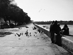 La Costanera (Pankcho) Tags: people blancoynegro argentina ro river blackwhite buenosaires gente pigeons meat explore palomas carne pancho asado puertomadero costanera norte argentinos choripan argentinians bondiola
