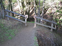 Creekside Trail - Fremont Older Open Space Preserve