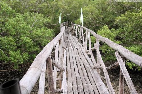 bamboo bridge  tabuk island