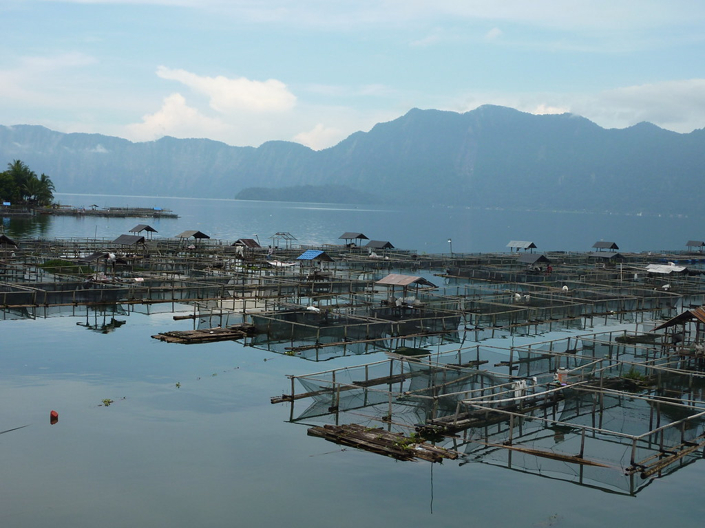 Sumatra-Lac Maninjau (95)