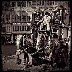 Gunsmoke (Frank van de Loo) Tags: horses horse caballo cheval coach carriage belgium belgique kutsche belgi voiture antwerp cavallo cavalo pferd antwerpen grotemarkt anvers paard paarden drafthorse carroza blgica flandria vlaanderen koets pferden paardentram trekpaard carrosse provincieantwerpen ciudaddeamberes chevalderait