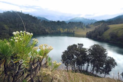 Landscape of Ranu Kumbulo