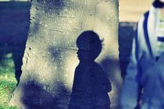 ease (damiec) Tags: shadow tree silhouette sisters focus play shutter bedhead picnik 930 owp 30daysofgratitude