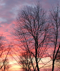Sunset  2006_01 06 (Cindy シンデイー) Tags: sunset sky landscape impressedbeauty superbmasterpiece