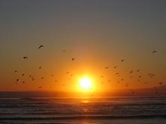 162-Costa Caparica-July'07 (Silvia Inacio) Tags: sunset beach portugal landscape almada costacaparica