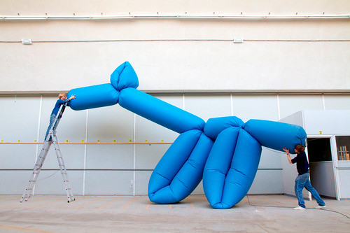 LA BOLLEUR: BALLOON ANIMALS